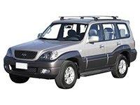 EVA коврики на Hyundai Terracan 2001 - 2006